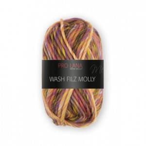 Wash-filz Molly 50g ~ 50m